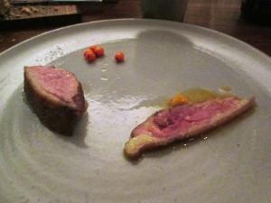 duck, sea buckthorn